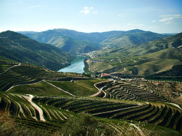 Looking for your 2018 vacation? Sign up for the Foundation's Douro River Cruise!